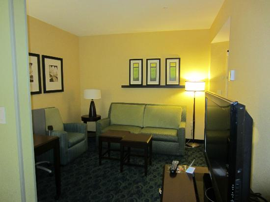 SpringHill Suites Jacksonville Airport : Nice living room area - with ample space