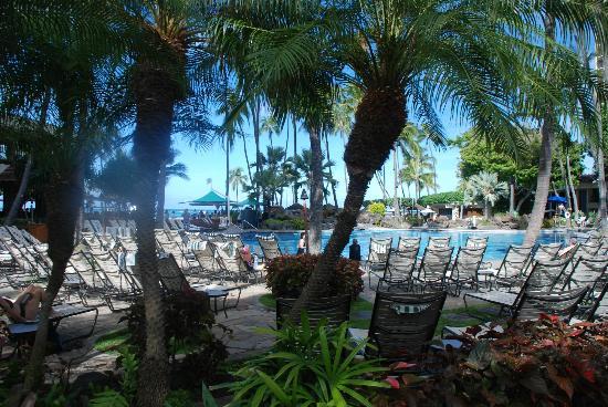 Hilton Hawaiian Village Waikiki Beach Resort: The Super Pool