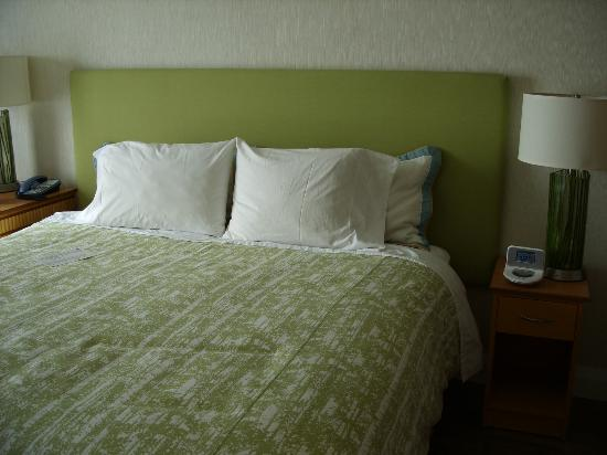 BWP Toronto Airport Hotel: Bed