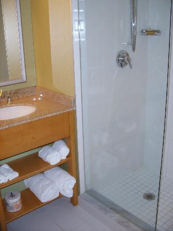 BWP Toronto Airport Hotel: Bathroom