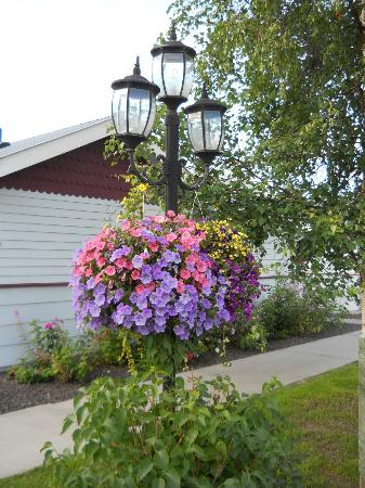 River's Edge RV Park & Campground: hanging baskets