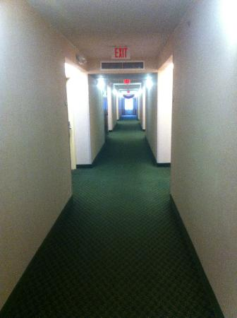 Fairfield Inn Orlando Airport: Hallway