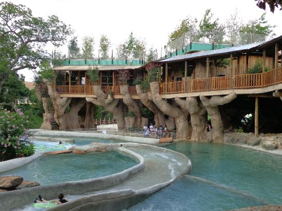 Schlitterbahn New Braunfels Waterpark: Tree Hauses by The Falls