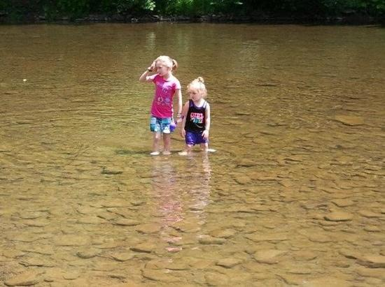 Rough Cut Lodge: our girls were playing in the creek EVERYDAY