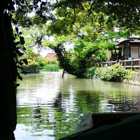 Suigo Yanagawa River Descending (Suigo Yanagawa Kanko)