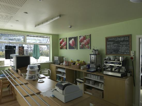 Harlech & Ardudwy Cafe: cafe counter