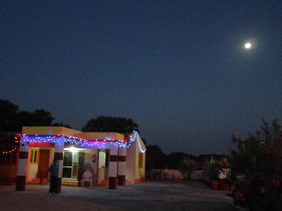 Hotel Palms: on a full moon night