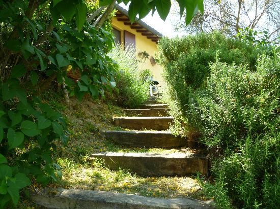 La Cardoncina: Plick vom pool