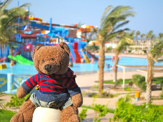 Makadi Water World : Loafie Bear at Makadi Aqua Park