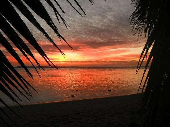 Sunhaven Beach Bungalows: The sunsets really are this beautiful