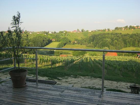 Restaurant in Turisticno Vinogradniska Kmetija Hlebec: back terrace with vineyards view