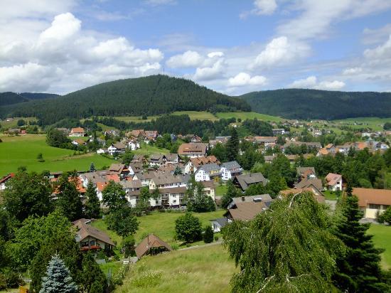 Oberdeisenhof - Landhotel Garni: Ausblick vom Balkon