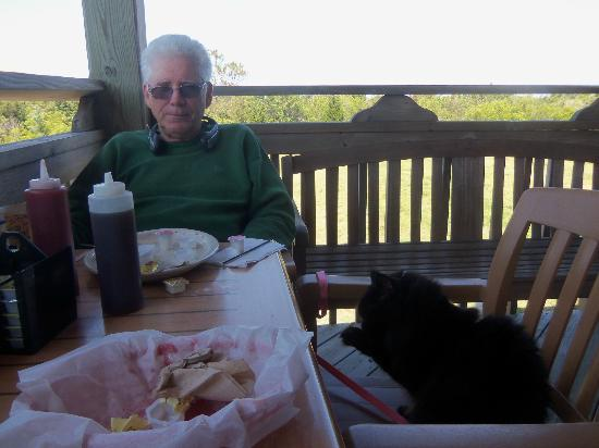Our cat Summer enjoys outdoor seating at ACC.