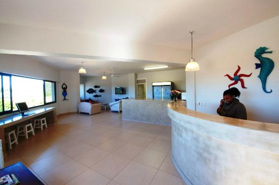 Plett Beachfront Accommodation: Reception, Lounge, Kitchen and internet