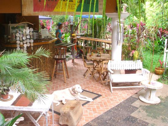 Pura Vida Pantry: Totally tropical garden setting, available for private parties and children´s birthdays