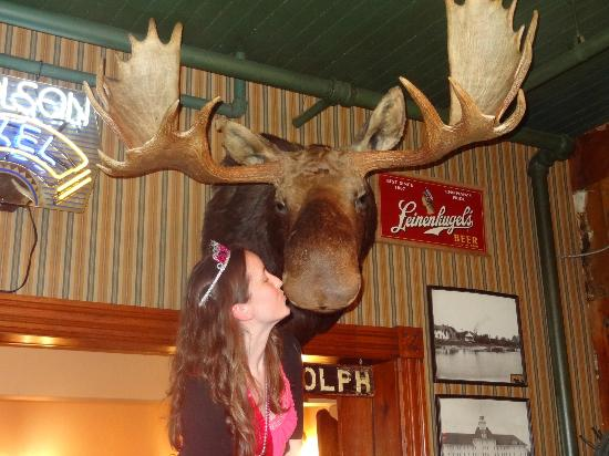 Sleder's Family Tavern: Smoock the moose