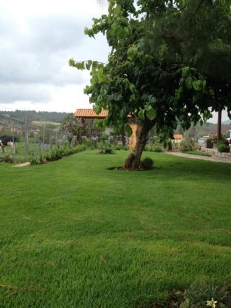Mazamitla, México: jardín