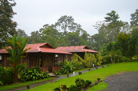 Hotel Rancho Cerro Azul: The grounds