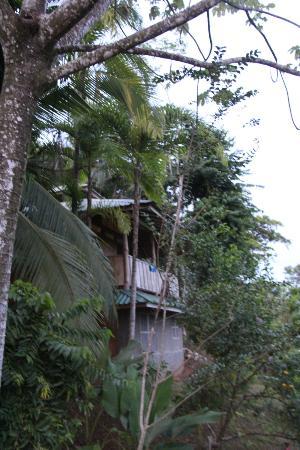 La Cusinga Eco Lodge: Blick zu unserer Unterkunft