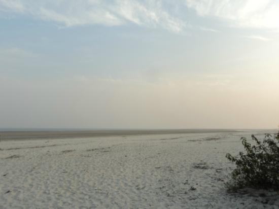 Bakkhali : henry island beach