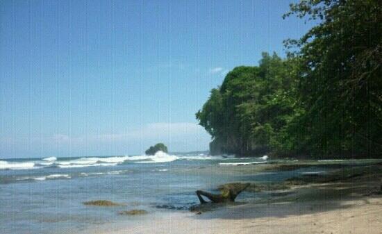 Puerto Viejo Beach: playa y selva
