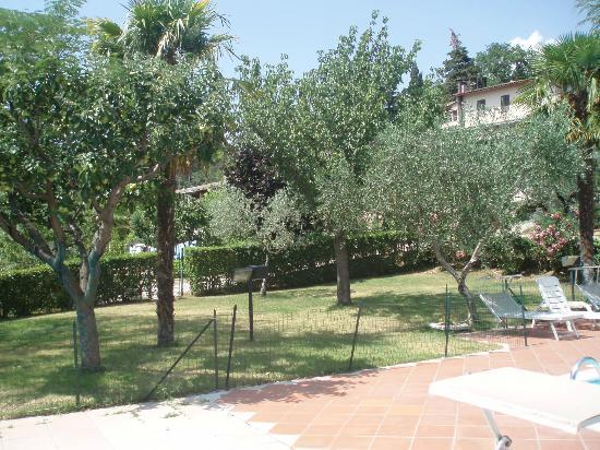 Hotel Da Angelo: verde vicino piscina