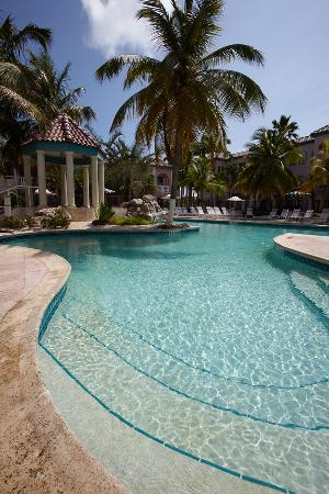 Caribbean Palm Village Resort: Pool Phase 2