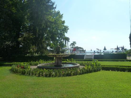 Hotel Vela d'Oro: Garden/pool area