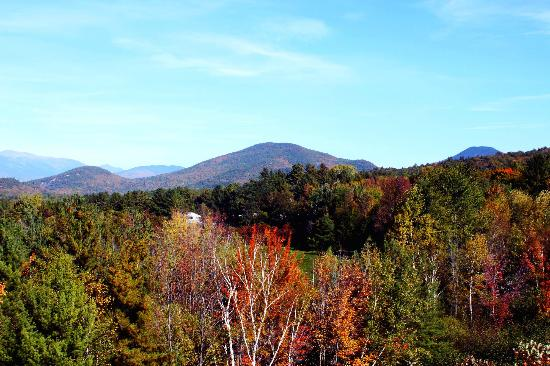 Intervale Motel: View of Mt Washington from Motel