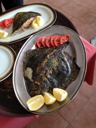 Macues : grilled turbot