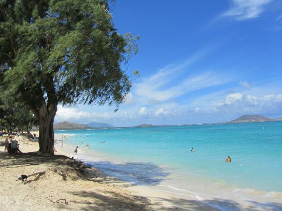 Lanikai Beach: White sand.