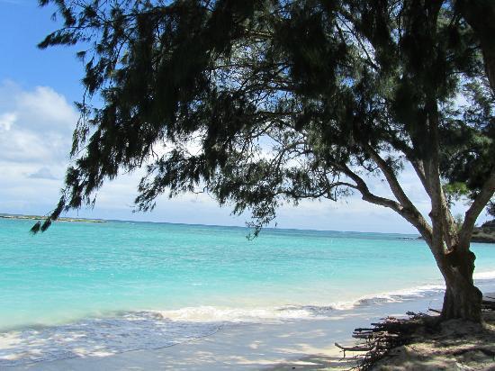 Lanikai Beach: Great!