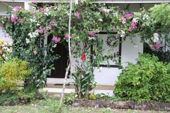 Hotel Hibiscus Garden: Guest House