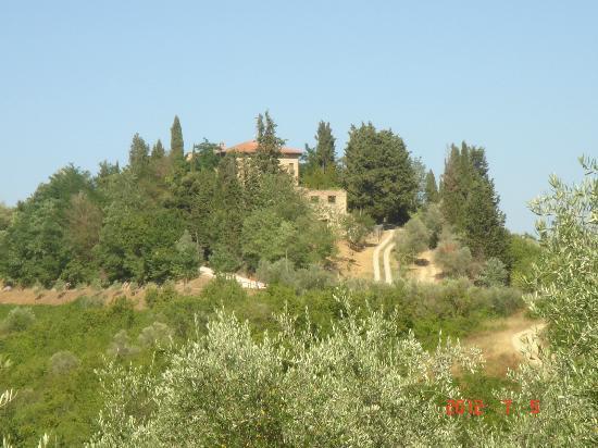 توراشيا دي تشيوسي: View 
