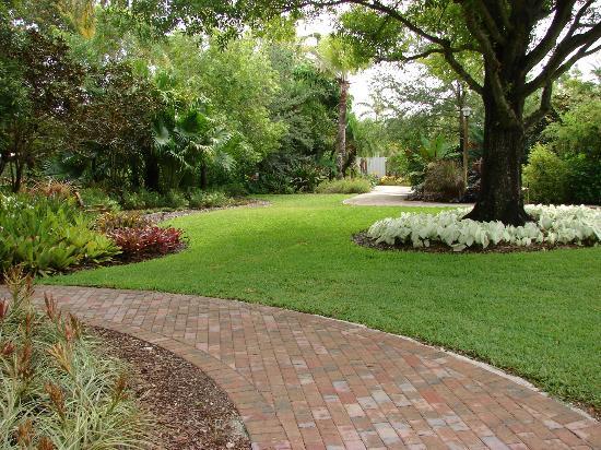 Heathcote Botanical Gardens: Book Party At Heathcote Bonsai Gallery