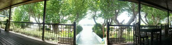 Rio Laura Delta Lodge : Vista camino al Río