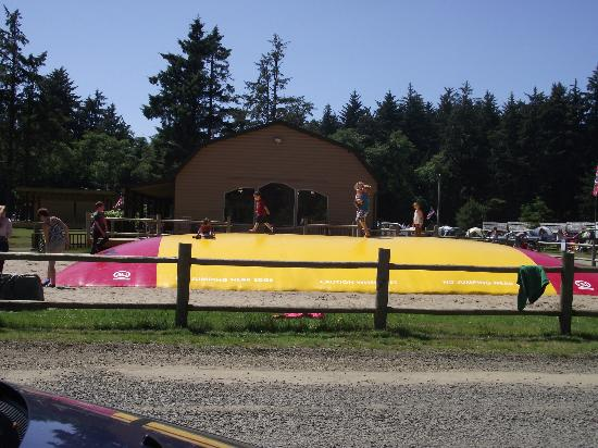 Astoria/Warrenton/Seaside KOA: view from cabin - the jumping pillow