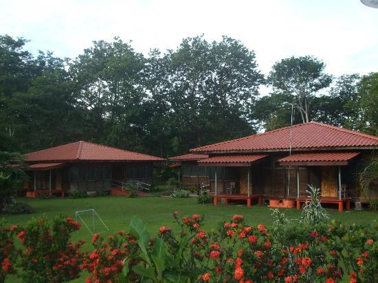 Hotel Canto de Ballenas: Rodeado de naturaleza.