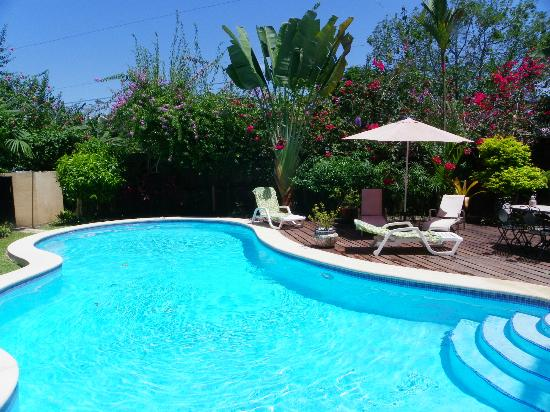 La Casa del Mango: The pool deck has loungers and chairs/table for you to catch rays or relax in the shade.
