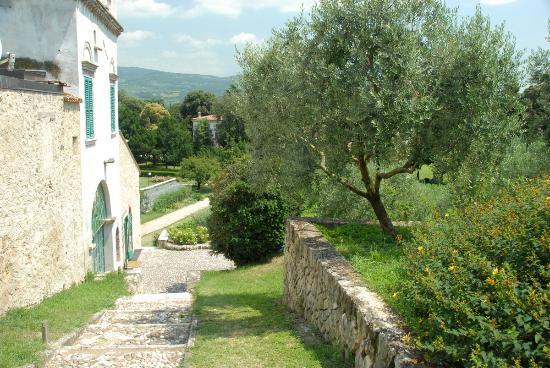 Villa Giona: Hage, bassengområdet