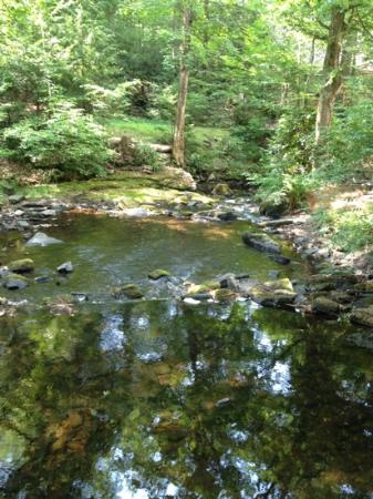 Martinville Streamside Cottages: love the stream