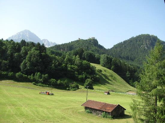 Pension Garni Waldrast: A picture of the valley behind the hotel