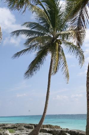Cabanas Copal: Praia e Sol