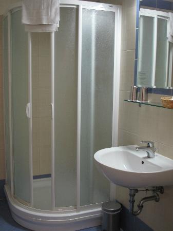 Hotel Central Basilica: nette badkamer met douche
