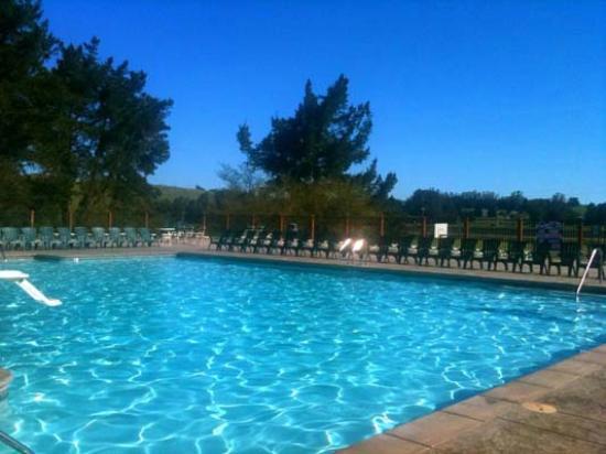 San Francisco North / Petaluma KOA: Huge pool with 10,000 sq ft of lounge area and cabanas