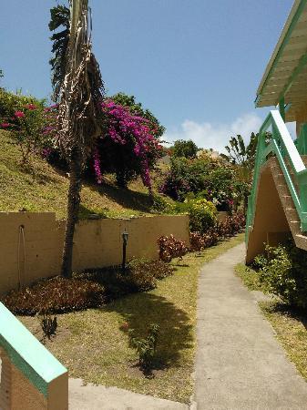 Bird Rock Beach Hotel: Bird Rock Hotel walkway