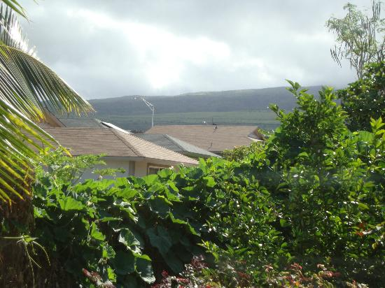 Maui Garden Oasis: Mountain view from Plumeria
