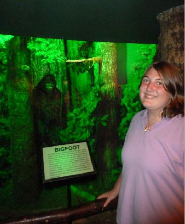 The Wax Works: Different stuff like a Bigfoot forest