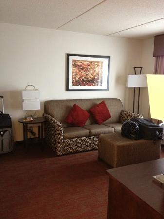 Hampton Inn and Suites Detroit/Airport-Romulus: living room area