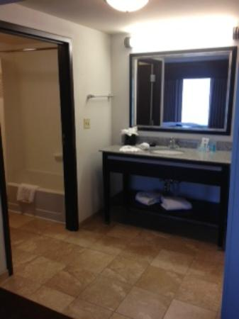 Hampton Inn and Suites Detroit/Airport-Romulus: wash basin acing sleeping area